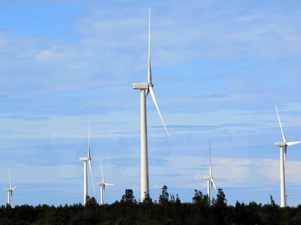Buscan desarrollar la energia eolica en Vietnam hinh anh 1