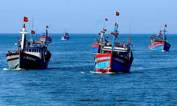 Localidad vietnamita planea desarrollar economia maritima y energias renovables hinh anh 1