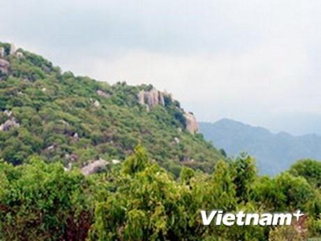 Promueven ecoturismo en provincia central de Ninh Thuan hinh anh 1