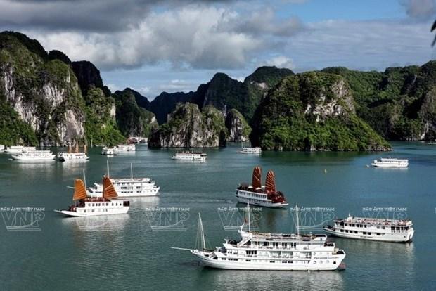Creciente llegada de cruceros a Vietnam hinh anh 1
