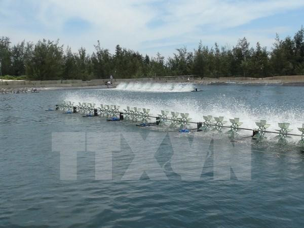 Provincia vietnamita fija meta de ingresar mil millones de dolares de exportaciones hinh anh 1
