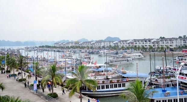 Quang Ninh recibe a mas de ocho millones de turistas hinh anh 1