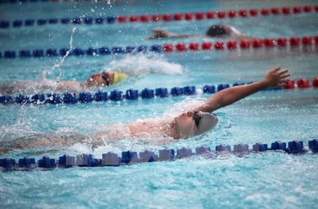 Vietnam se impone en torneo regional de natacion hinh anh 1