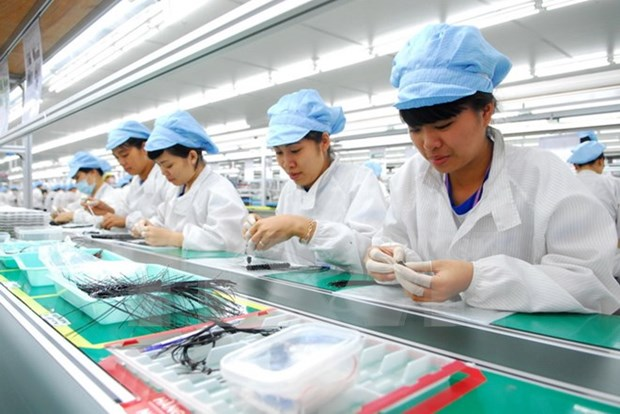 Vietnam busca desarrollar recursos humanos en integracion internacional hinh anh 1