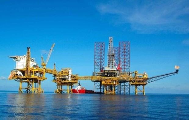 Vietsovpetro extraera mas de cinco millones de toneladas de crudo este ano hinh anh 1