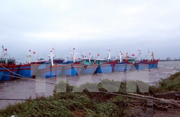Kien Giang dedica atencion a residentes en zonas fronterizas, maritimas, insulares hinh anh 1