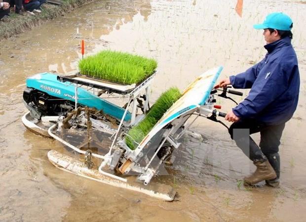 JICA asiste a desarrollo rural en provincia de Vietnam hinh anh 1
