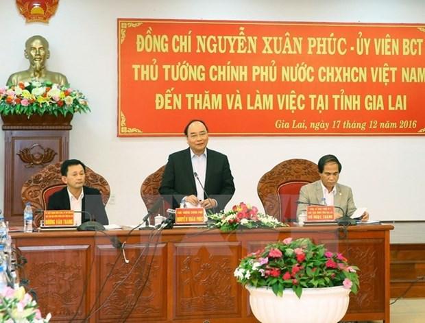 Premier pide a provincia de Gia Lai ofrecer incentivos para inversores hinh anh 1