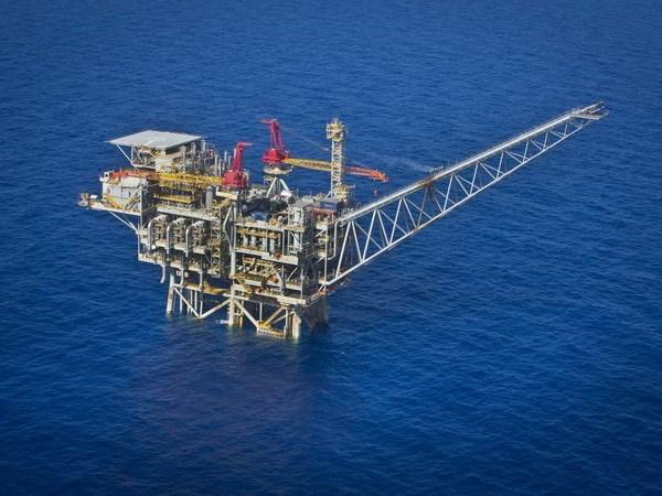 Empresa petrolera de Vietnam impulsa el suministro de servicios en extranjero hinh anh 1