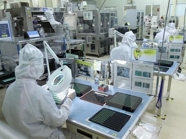 Vietnam carece del personal calificado en tecnologia informatica hinh anh 1