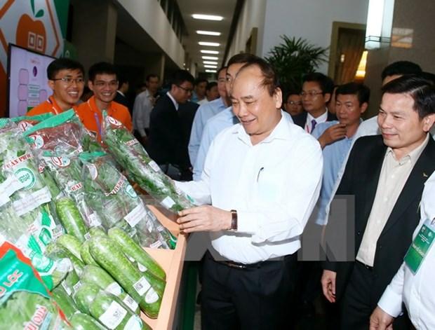Premier: Vietnam debe convertirse en una potencia en agricultura hinh anh 1