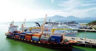 Puerto de Da Nang se convertira en centro logistico de region central hinh anh 1