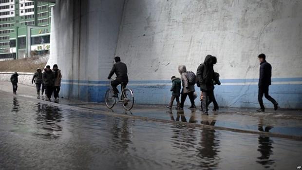 Vietnam ofrece asistencia a victimas de inundaciones en Corea del Norte hinh anh 1