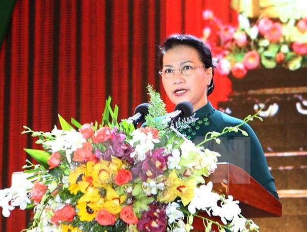 Provincia de extremo Sur celebra 20 anos de su restablecimiento hinh anh 1