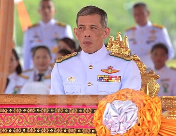 Nuevo rey tailandes llama a unidad nacional en su mensaje de nuevo ano hinh anh 1