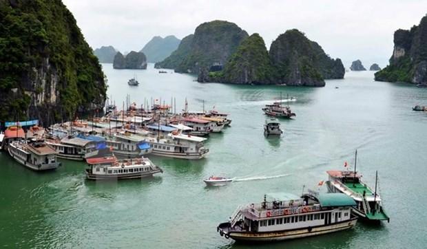 Sube numero de visitantes extranjeros a provincia vietnamita de Quang Ninh hinh anh 1