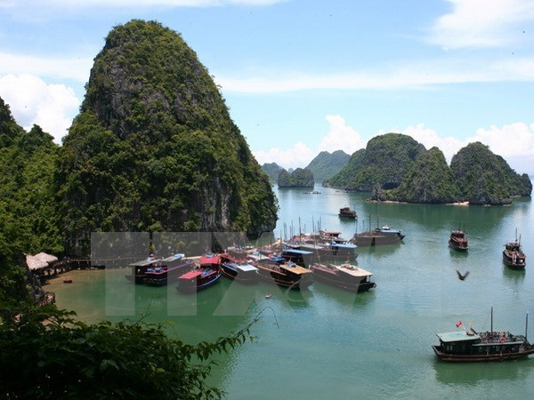 Bahia vietnamita de Ha Long atrae a mas de 26 mil turistas en primeros dias de 2017 hinh anh 1