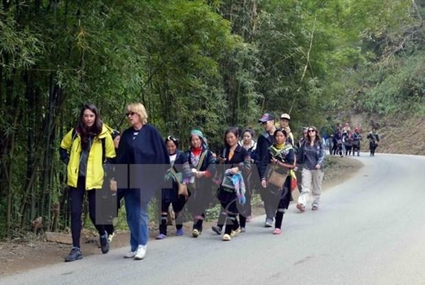 Registran aumento de visitantes al pueblo vietnamita de Sa Pa en Ano Nuevo hinh anh 1