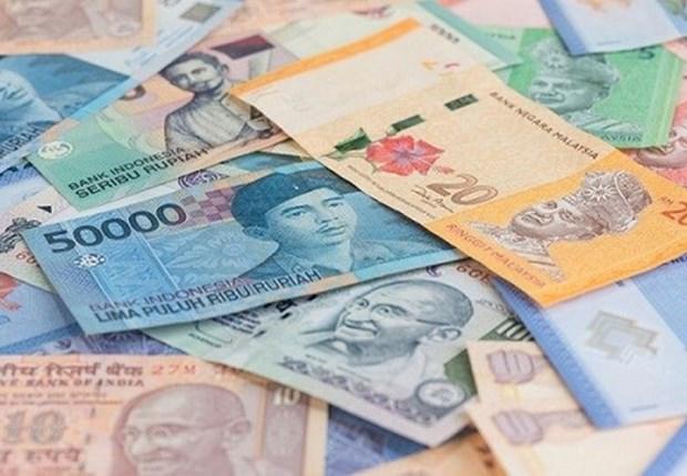 Tailandia, Indonesia y Malasia utilizaran moneda oficial en comercio bilateral hinh anh 1