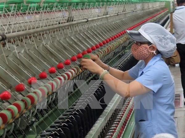 2017: Ano de oportunidades para exportaciones de Vietnam hinh anh 1