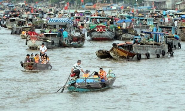 Can Tho impulsa la preservacion del mercado flotante de Cai Rang hinh anh 1