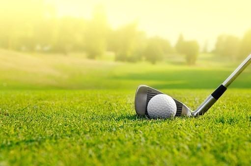 Golfistas vietnamitas en ultramar compiten en torneo en Thanh Hoa hinh anh 1