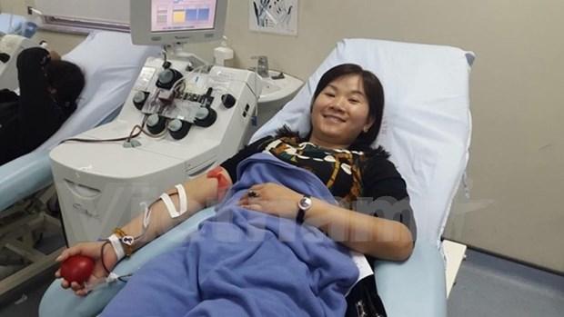 Realizaran eventos de donacion de sangre en Vietnam hinh anh 1