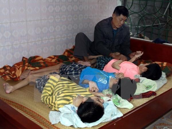 Organizan programa cultural a favor de victimas de agente naranja en Vietnam hinh anh 1