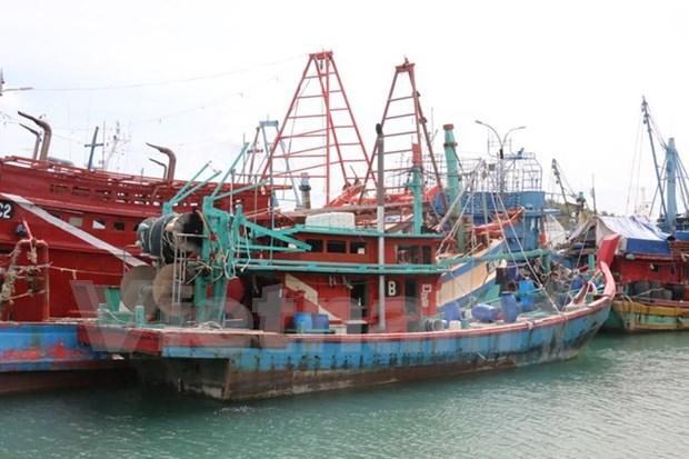 Indonesia detiene 163 barcos por pesca ilegal en 2016 hinh anh 1