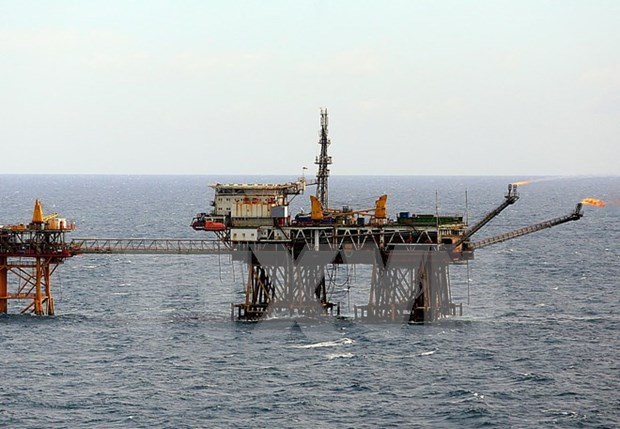 Vietnam coopera con grupo estadounidense Halliburton en exploracion de petroleo hinh anh 1
