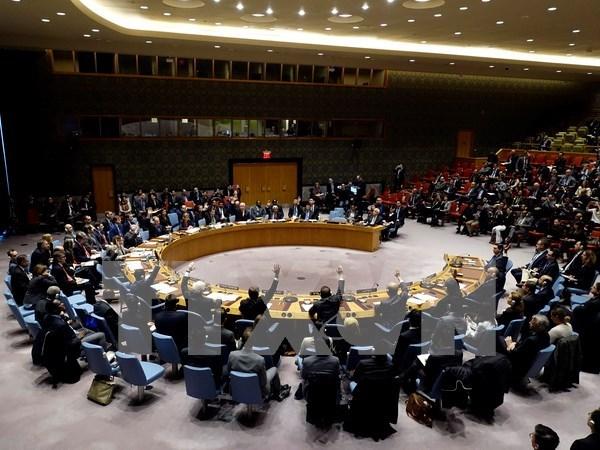 Vietnam llama a ONU elaborar estrategia para prevenir conflictos a largo plazo hinh anh 1