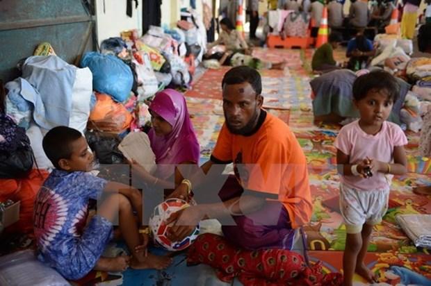 Malasia acogera conferencia sobre crisis de rohingyas hinh anh 1