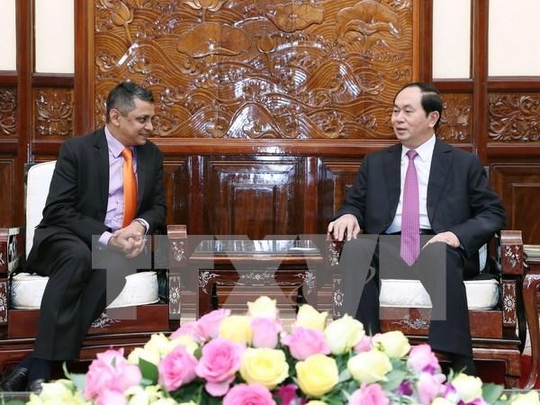 Presidente de Vietnam recibe al ejecutivo del grupo indio TATA hinh anh 1