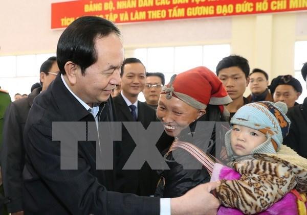 Presidente vietnamita pide prestar atencion a hogares pobres en ocasion de Tet hinh anh 1