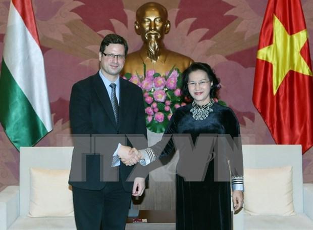 Vietnam sugiere mayor intercambio de delegaciones parlamentarias con Hungria hinh anh 1