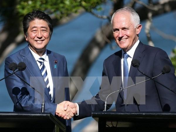 Japon y Australia comprometidos a acelerar el TPP hinh anh 1
