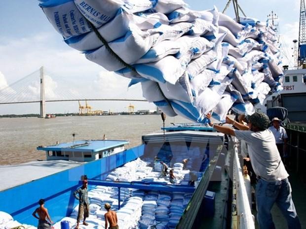 Prorrogan hasta 2018 acuerdo de comercio arrocero entre Vietnam y Filipinas hinh anh 1
