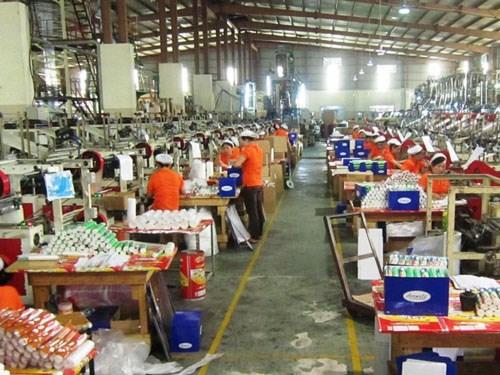 Sector vietnamita de plastico preve alza de exportacion en 2017 hinh anh 1