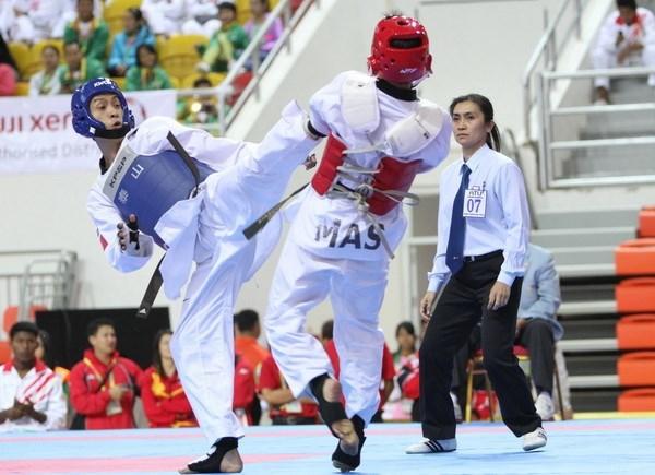 Taekwondistas vietnamitas ganan medallas de oro en Campeonato de Francia hinh anh 1