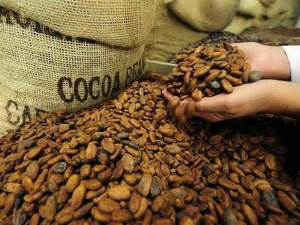 Vietnam suspende importaciones de productos agricolas de Indonesia hinh anh 1