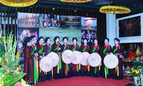 Efectuan gala artistica de Vietnam en ciudad japonesa en saludo al Tet hinh anh 1