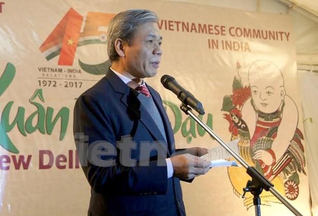 Conmemoran 45 anos de establecimiento de lazos Vietnam-India hinh anh 1