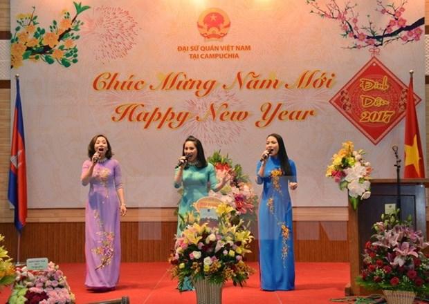 Festejan vietnamitas en Camboya el Ano Nuevo Lunar hinh anh 1