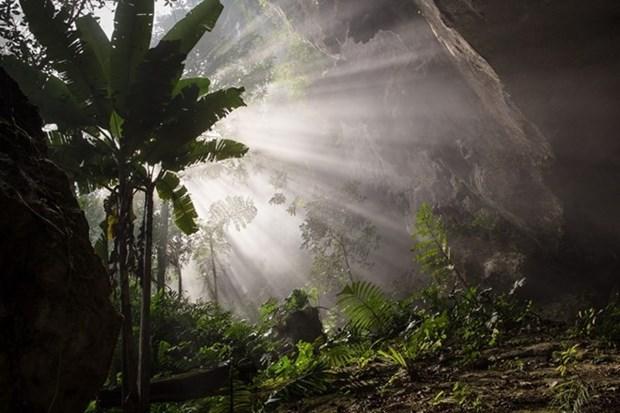 Vietnam esclarece informacion sobre cueva Son Doong hinh anh 1