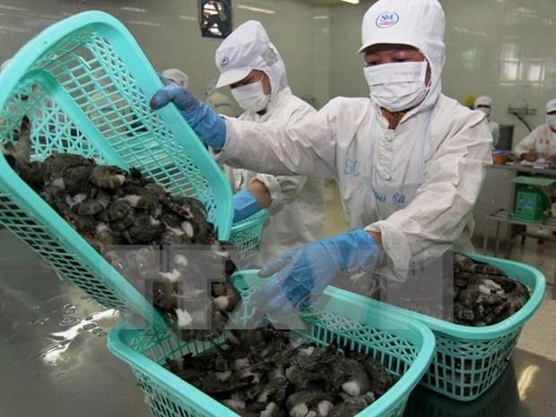 Preven leve incremento de exportaciones de productos acuicolas de Vietnam hinh anh 1