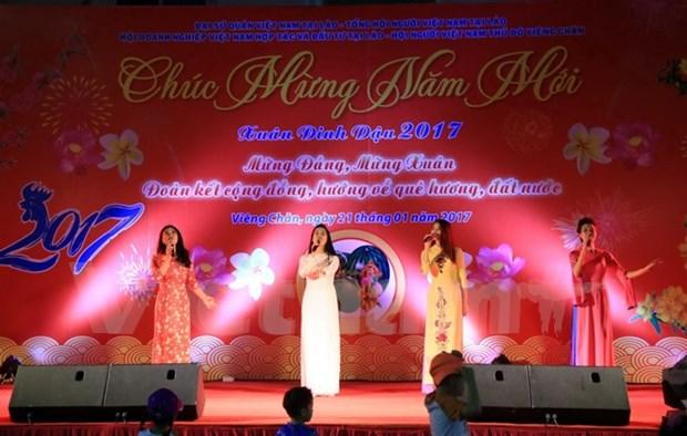 Vietnamitas en Laos y Japon celebran fiesta tradicional hinh anh 1