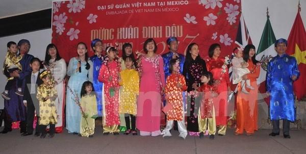 Comunidad vietnamita en Mexico celebra Ano Nuevo Lunar hinh anh 1