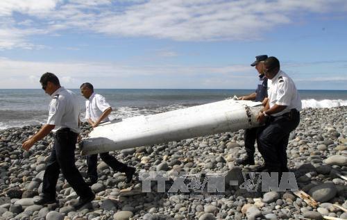Malasia forma equipo encargado del caso MH370 hinh anh 1