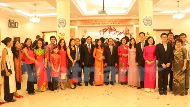 Comunidades vietnamitas en extranjero festejan el Tet de 2017 hinh anh 1