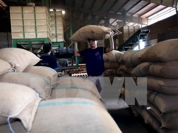Exportaciones agricolas de Vietnam disminuyen en enero de 2017 hinh anh 1